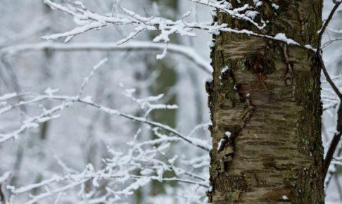 冬の現場作業にオススメの防寒対策